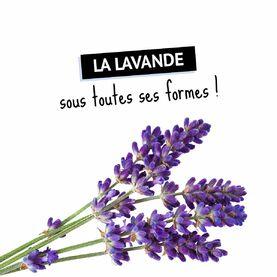 La #Lavande, c'est un peu le joyau de la Provence ! On vous fait découvrir ses différents bienfaits dans notre guide.  // HUILE ESSENTIELLE DE LAVANDE FINE SAUVAGE 👉 Efficace sur les petites plaies et le feu du rasoir. 📝Par voie cutanée : 1 goutte en massage dans un peu d'huile végétale. ⚠️ Déconseillé chez la femme enceinte ou allaitante. Ne pas utiliser chez l'enfant de moins de 6 ans.  // HUILE ESSENTIELLE DE LAVANDE FINE AOP HAUTE-PROVENCE 👉 Agit sur les troubles liés au surmenage et aide à se détendre grâce à ses propriétés relaxantes et apaisantes. 📝 Par voie orale : 2 gouttes 3 fois par jour sur un support neutre (miel, sucre, huile végétale). ⚠️ Déconseillé chez la femme enceinte ou allaitante. Ne pas utiliser chez l'enfant de moins de 6 ans.  // HUILE ESSENTIELLE DE LAVANDE ASPIC 👉 Soulage les douleurs musculaires et articulaires ainsi que les piqûres d'insectes. 📝Par voie cutanée : 1 goutte en massage sur la piqûre dans un peu d'huile végétale ⚠️ Déconseillé chez la femme enceinte ou allaitante. Ne pas utiliser chez l'enfant de moins de 12 ans.  // HUILE ESSENTIELLE DE LAVANDIN 👉 Issu d'un croisement spontané entre la lavande fine et la lavande aspic. 📝 Par voie orale : 1 goutte 2 fois par jour sur un support neutre (miel, sucre, huile végétale). ⚠️ Ne pas utiliser chez l'enfant de moins de 12 ans et chez la femme enceinte ou allaitante. Ne pas l'utiliser de manière prolongée également.  // EAU FLORALE DE LAVANDE BIO 👉 Apporte netteté et équilibre aux peaux mixtes à grasses, grâce à ses propriétés purifiantes et rééquilibrantes. 📝 Par voie cutanée : à l'aide d'un coton sur le visage, matin et soir pour tonifier et unifier le teint. L'application en compresse sur les imperfections est possible également.  __ Demander conseil à un professionnel de santé en cas de doute. Les huiles essentielles sont à utiliser avec précaution chez les personnes sous traitement.